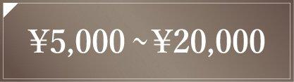 5,000円〜20,000円
